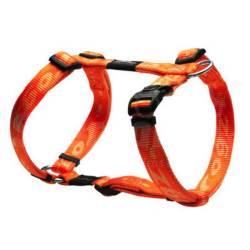Harnais "Alpinist" Orange