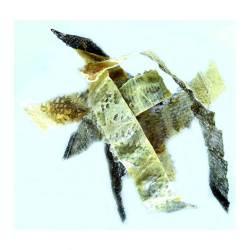 Peau de Poisson Séchées