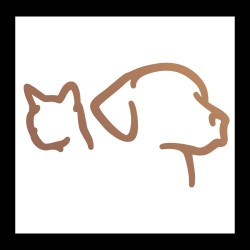 Chiens - Chats